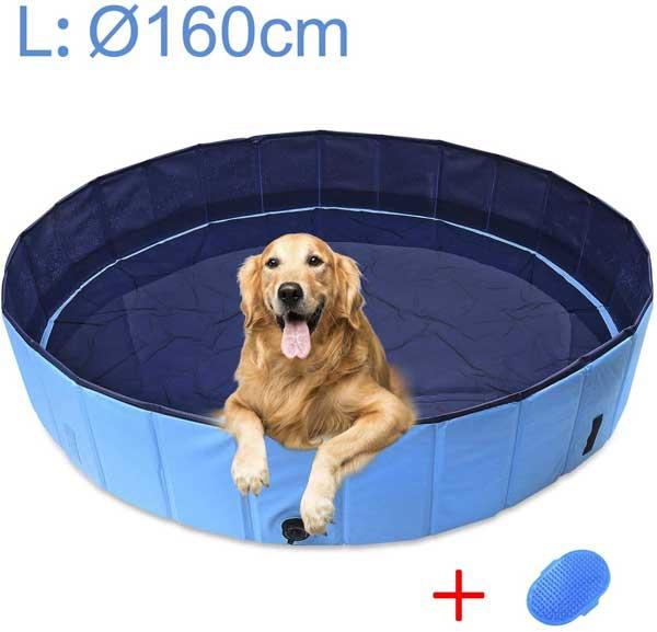 Piscine pour chien grande taille