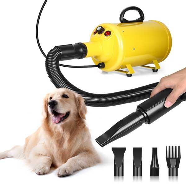 Séchoir professionnel pour chiens à poils longs