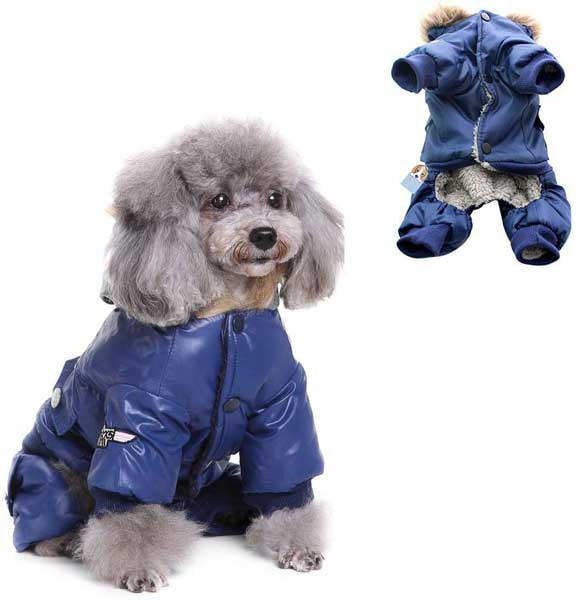 Doudoune chaude pour chien