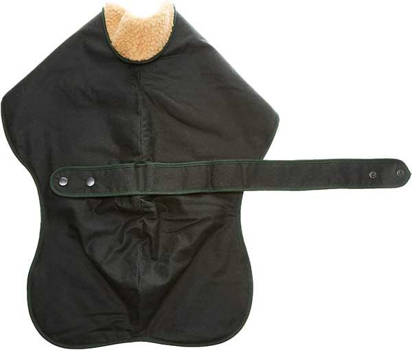 Manteau pour Lévrier & Whippet