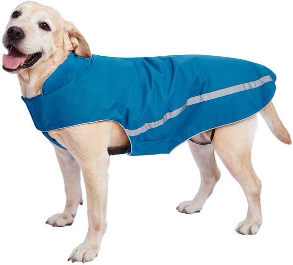 Manteau imperméable et coupe vent pour chien