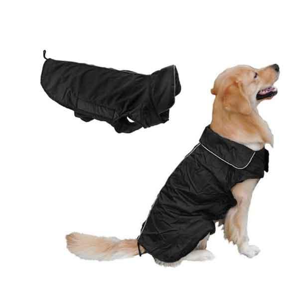 Veste imperméable pour chien XL - XXL