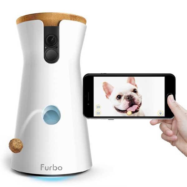 Robot lanceur de croquettes pour chien
