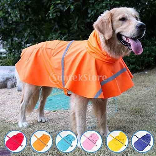 Manteau imperméable coloré pour chien