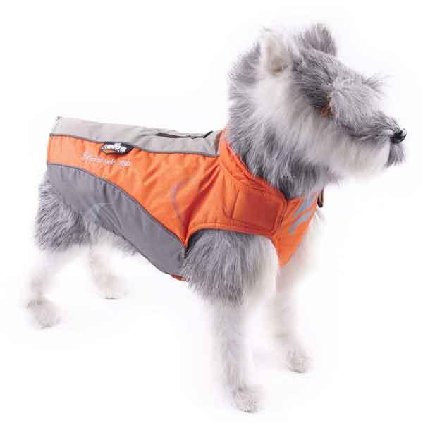 Veste imperméable pour chien