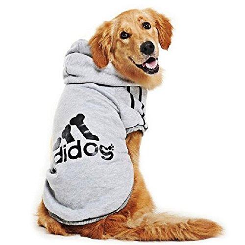 Sweat à capuche pour chien 6 couleurs