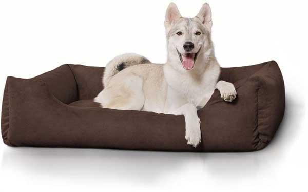 Panier lit grand pour chien