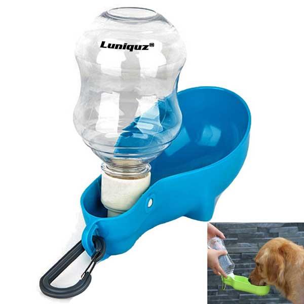 Bouteille d'eau pour chien avec clip