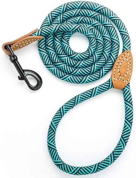 Laisse corde en nylon