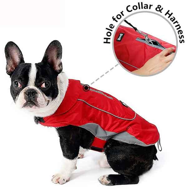 Manteau imperméable sport pour chien