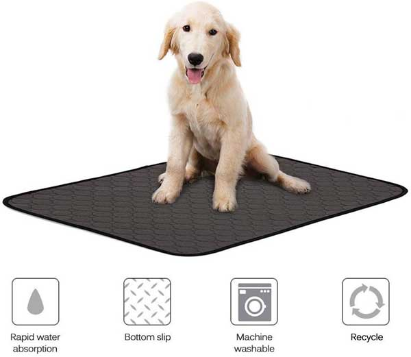 Tapis absorbant chiots
