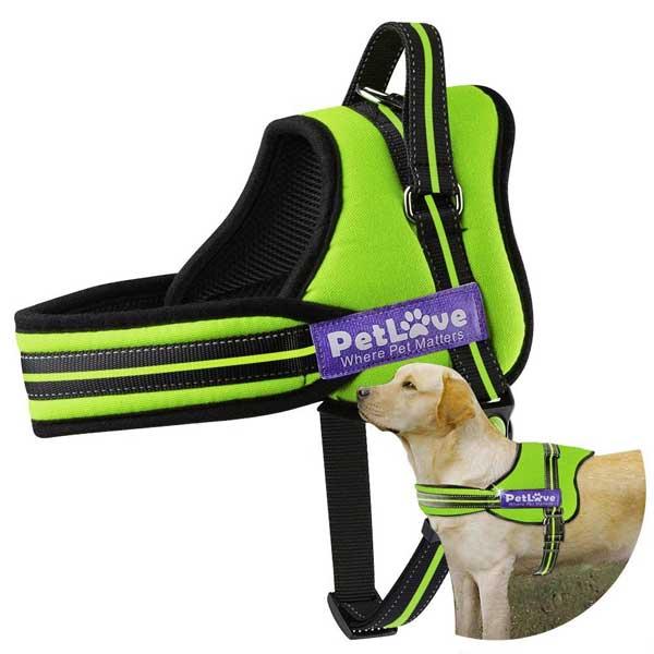 Harnais rembourré pour chien toutes tailles