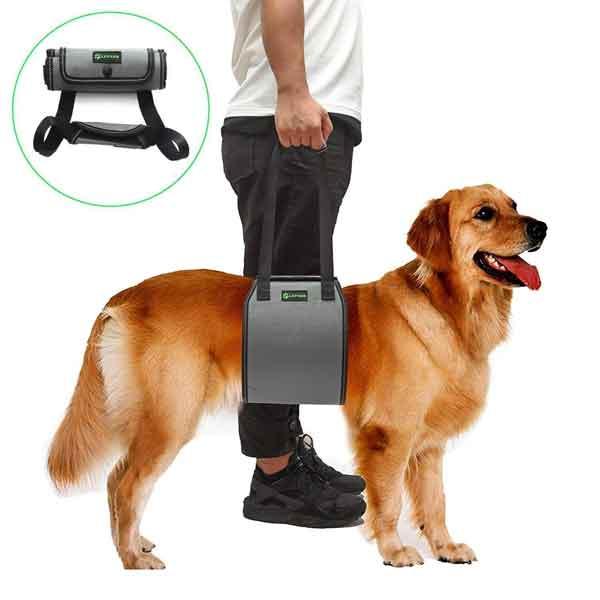 Harnais de soutien pour chien entre 35 et 45 Kg