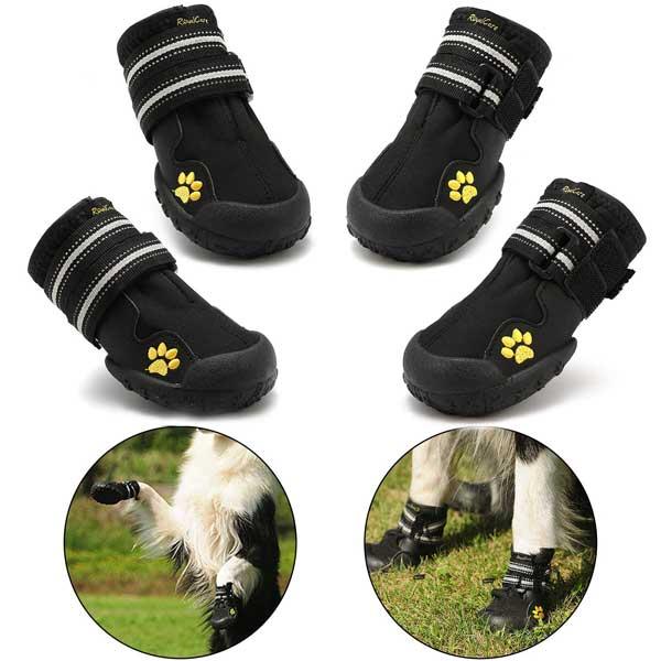 Chaussures d'hiver pour chiens