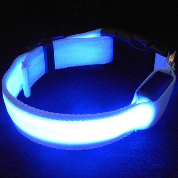 Collier LED rechargeable pour chien