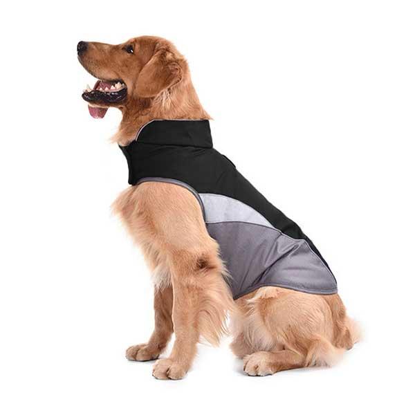 Manteau imperméable grand chien