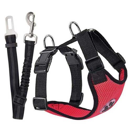 Harnais chien + ceinture de sécurité