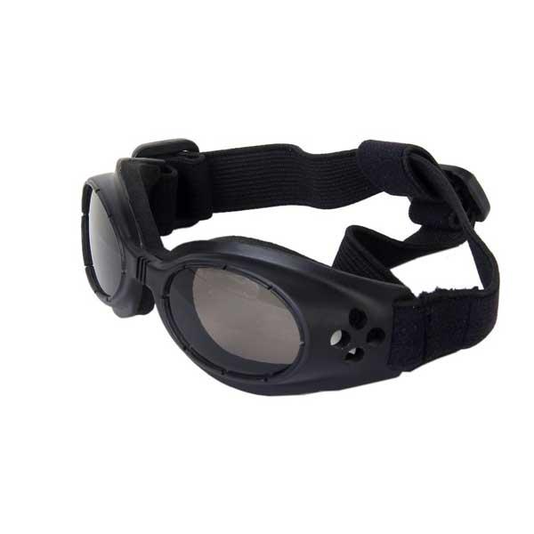Lunettes de Protection UV pour chien