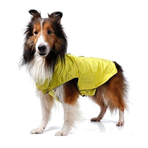 Manteau imperméable polaire pour chien