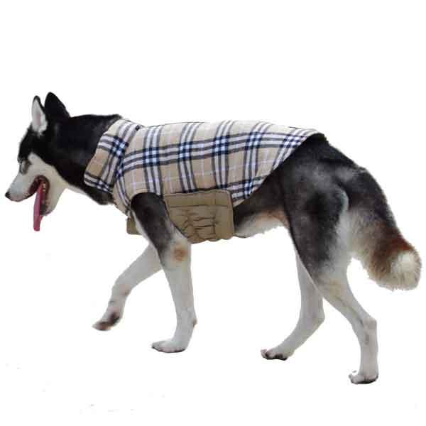 Veste réversible pour chien