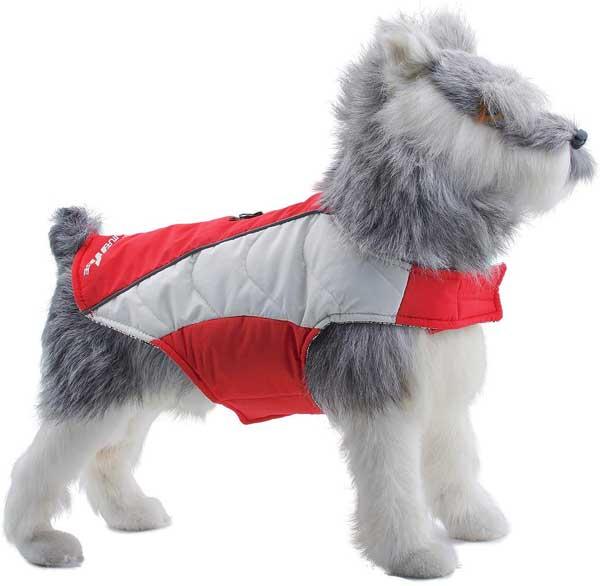 Veste chaude pour chien
