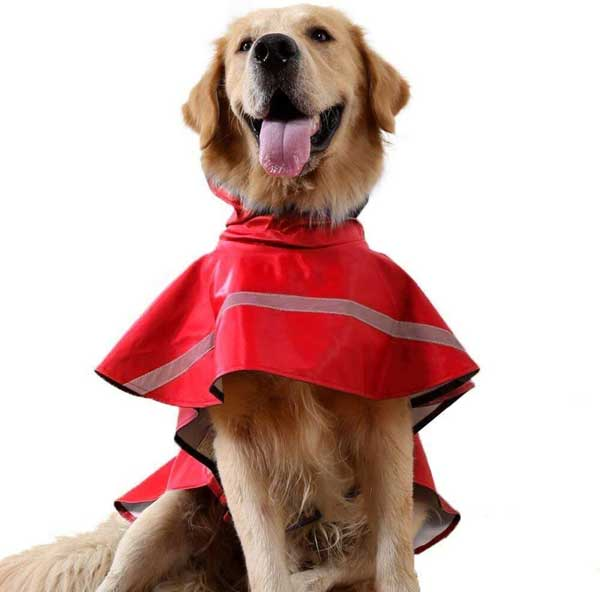 Manteau imperméable coupe vent avec capuche