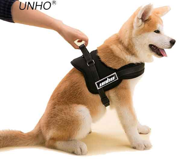 Harnais réglable chien toutes tailles