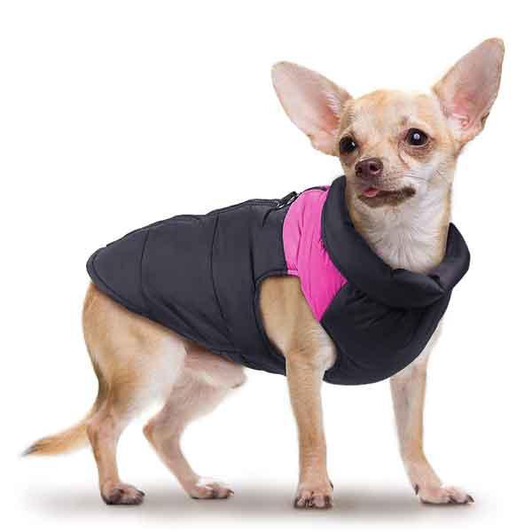 Manteau imperméable chaud petit chien