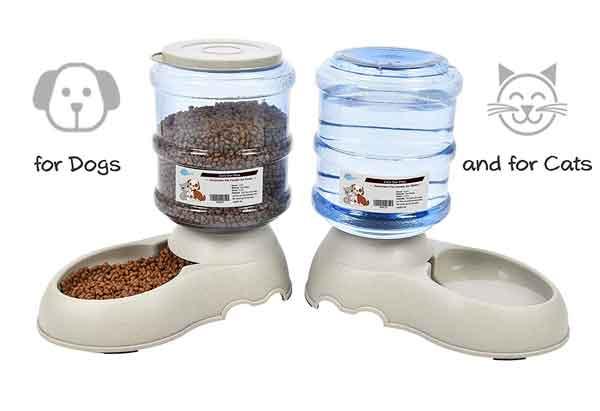 Distributeur de croquettes et eau pour chien