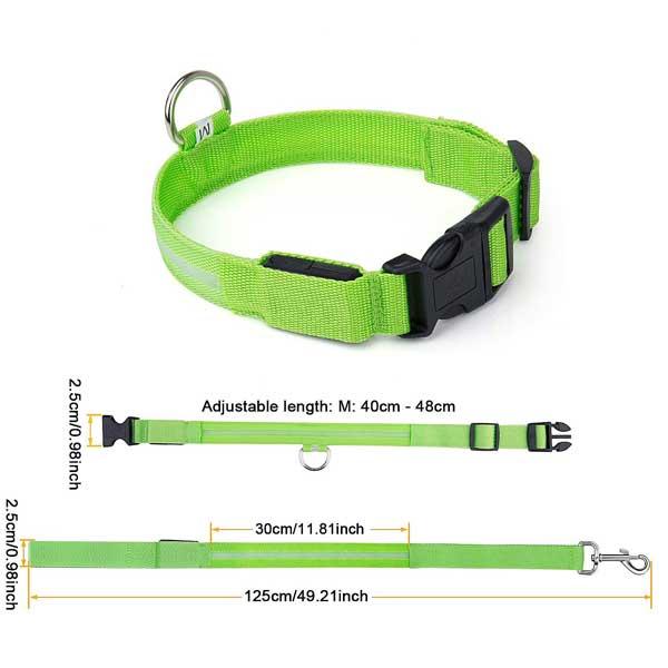 Collier LED sécurité pour chien