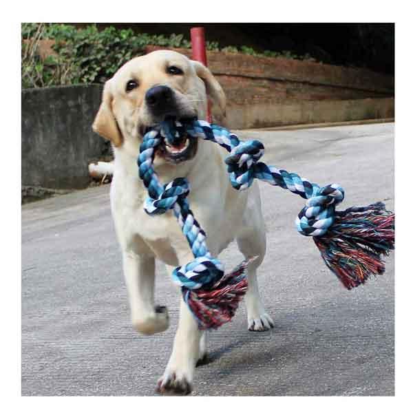 Corde jouet pour grands chiens
